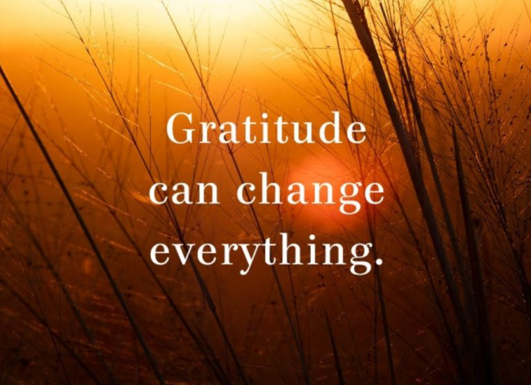 Gratitude Can Change Everything #thankyouthursdays #gratitude #peace #peacewords
