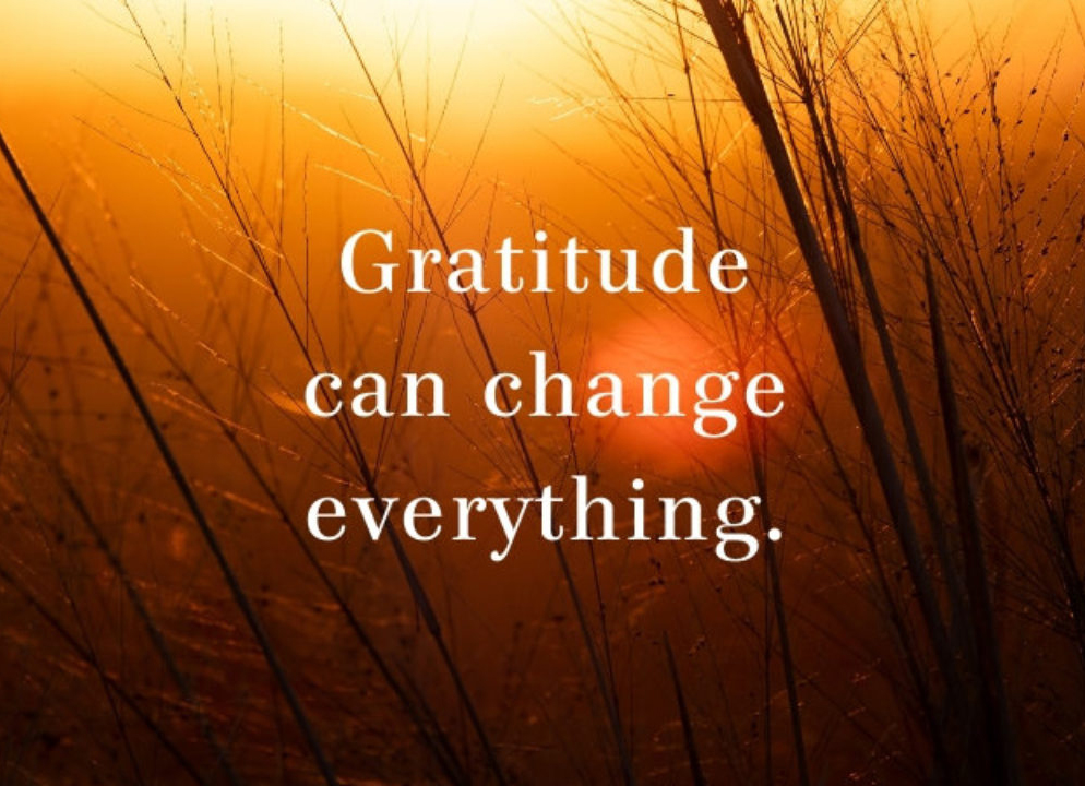 Gratitude Can Change Everything #thankyouthursdays #gratitude #peace #peacewords