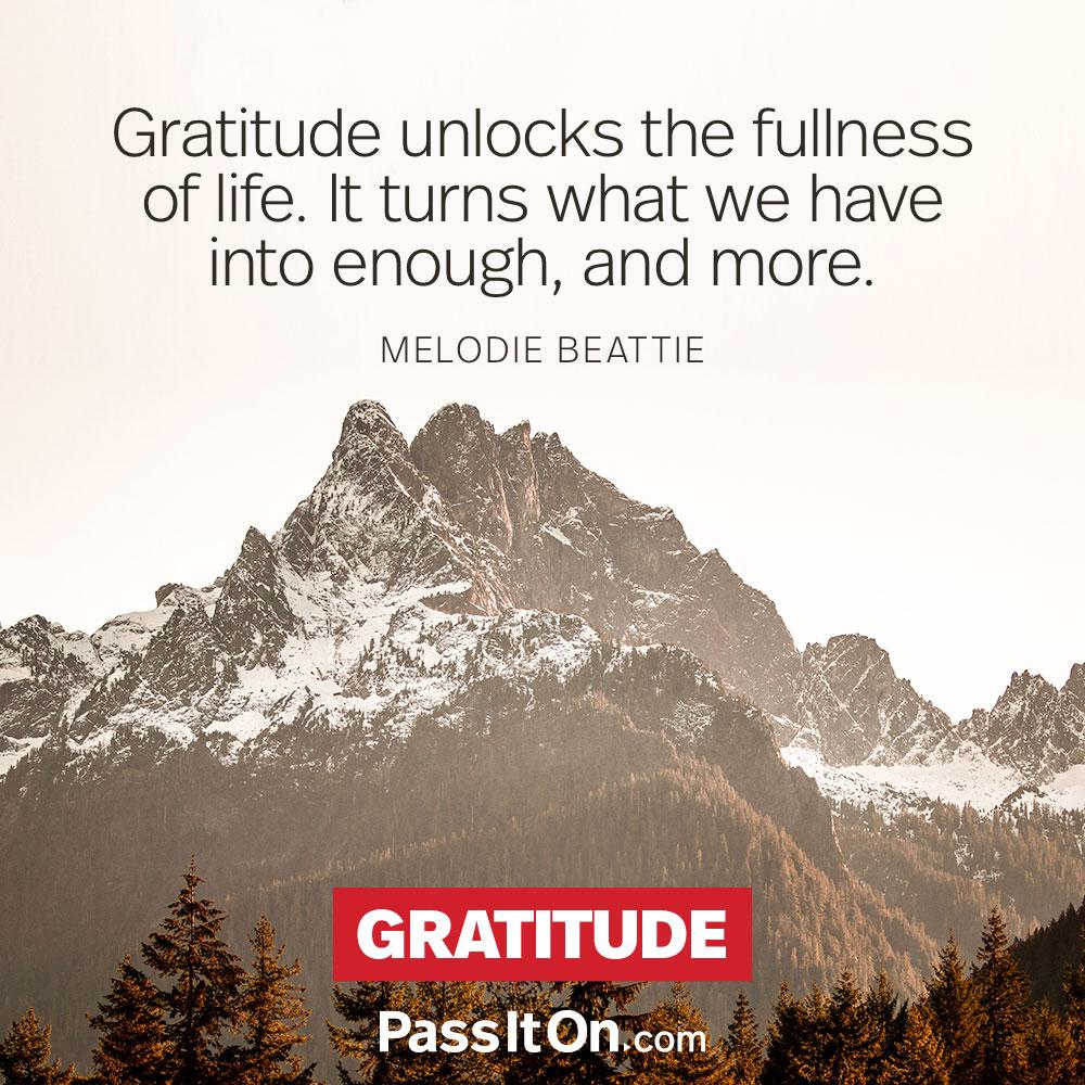 Gratitude #peace #peacewords
