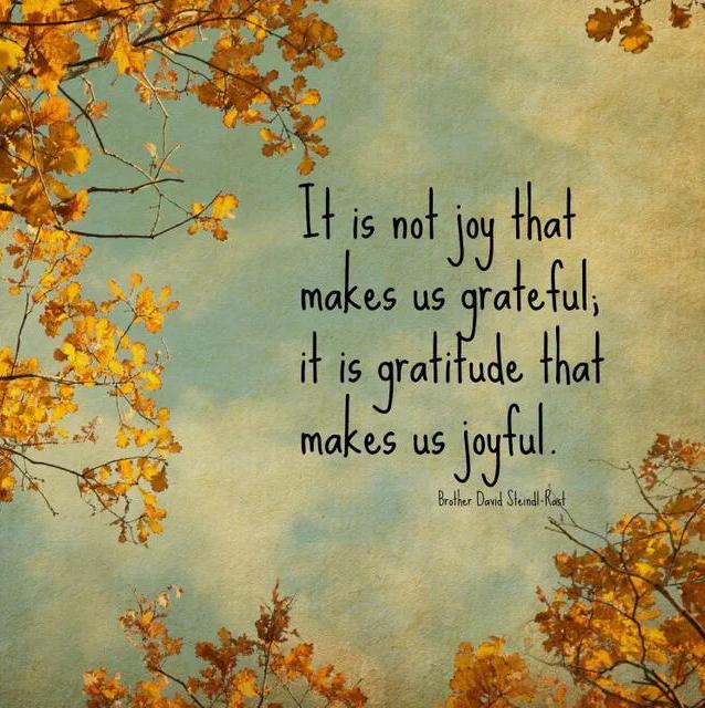 Joy  #thankyouthursdays #gratitude #peacewords #peace