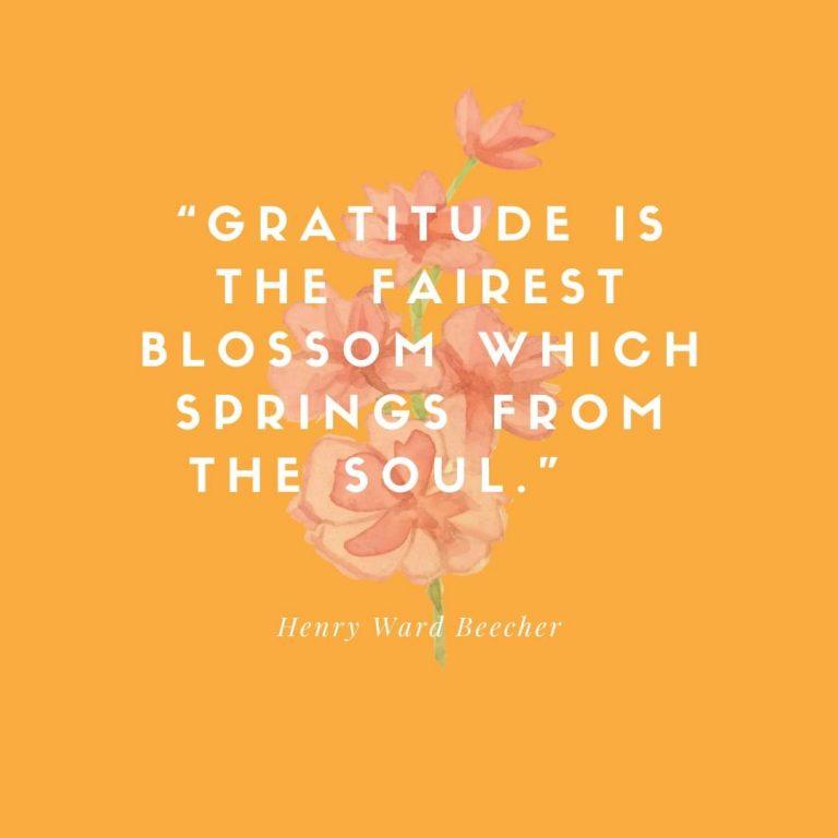 Gratitude Springs…